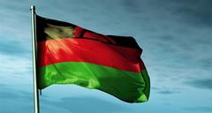 Malawi updates its national plan for implementing the Stockholm Convention
