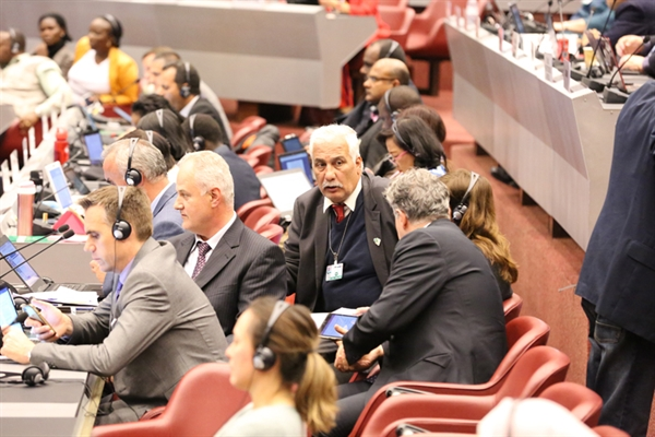 Final Report of the Stockholm Convention's COP-9 is now online