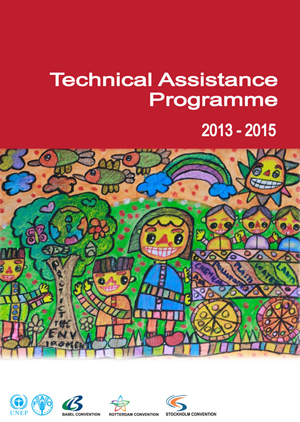 Technical Assistance Programme